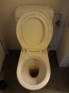 Dreckige Toilette - Vorher - Nachher Foto