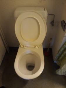 Saubere Toilette - Vorher - Nachher Foto